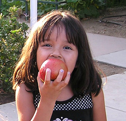 1-Who-we-Serve-Little-Girls-with-Apples_72